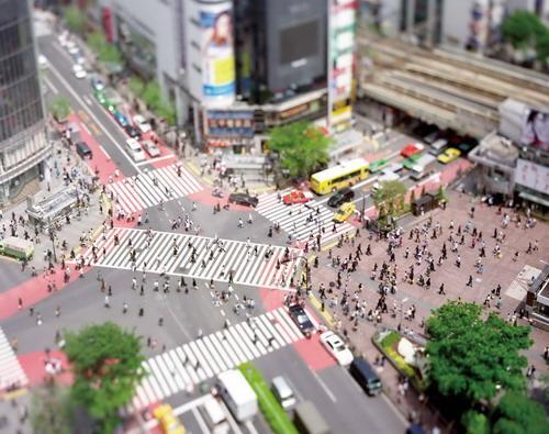 Naoki Honjo Shibuya