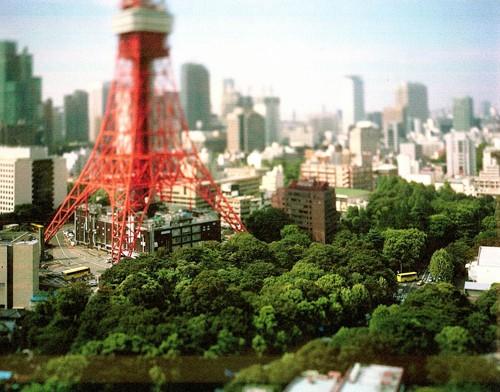 Naoki Honjo Tokyo Tower