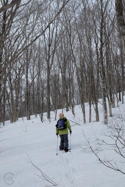 Hakuba Nagano snowshoe-11