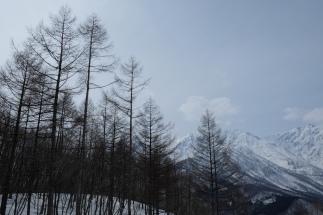 Hakuba Nagano snowshoe-4