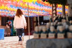 Busan sightseeing Korea photography-26