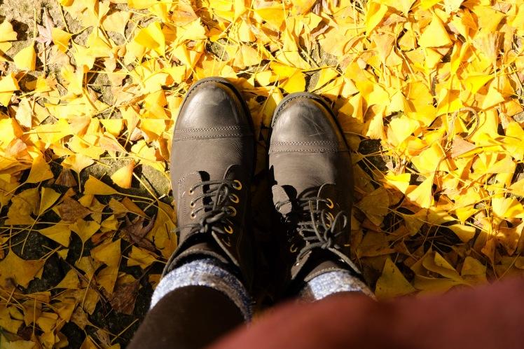 arita-autumn-leaves-japan-sightseeing-3