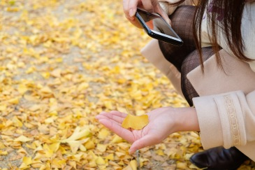 arita-autumn-leaves-japan-sightseeing-7