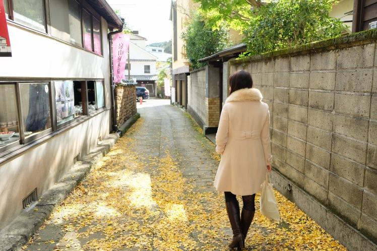 arita-autumn-leaves-japan-sightseeing-8