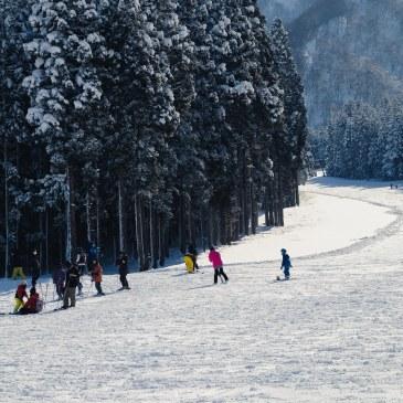 Snowboard winter sport Niigata Japan