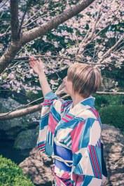 Sakura Cherry Blossoms Kirschblüten Tokyo New Otani-3
