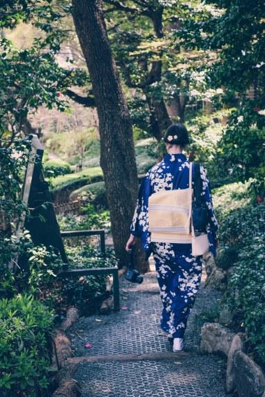 Sakura Cherry Blossoms Kirschblüten Tokyo New Otani-7