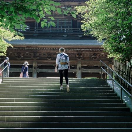 Kamakura Hydrangea Japanese temple shrine