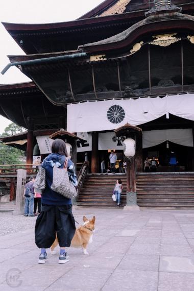 Hakuba Nagano Japan Sightseeing Zenkoji